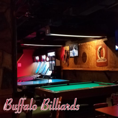 GW New Venture Buffalo Billiards B
